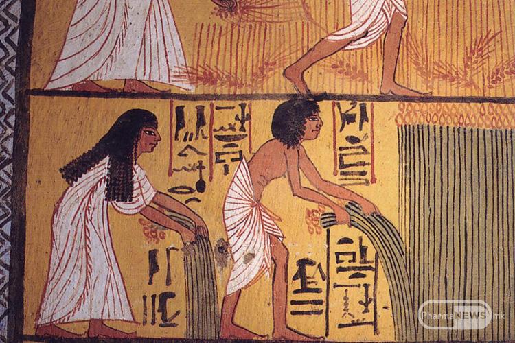 1_hranata niz istorijata_egyptian_harvest