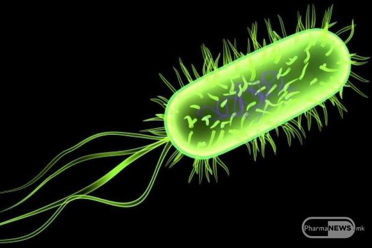 kako-da-se-sovlada-neskrotlivata-esherihia-coli_2