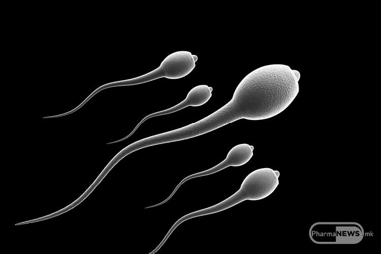 spermata-moze-da sodrzi-odredeni-indicii-na-autizam_12