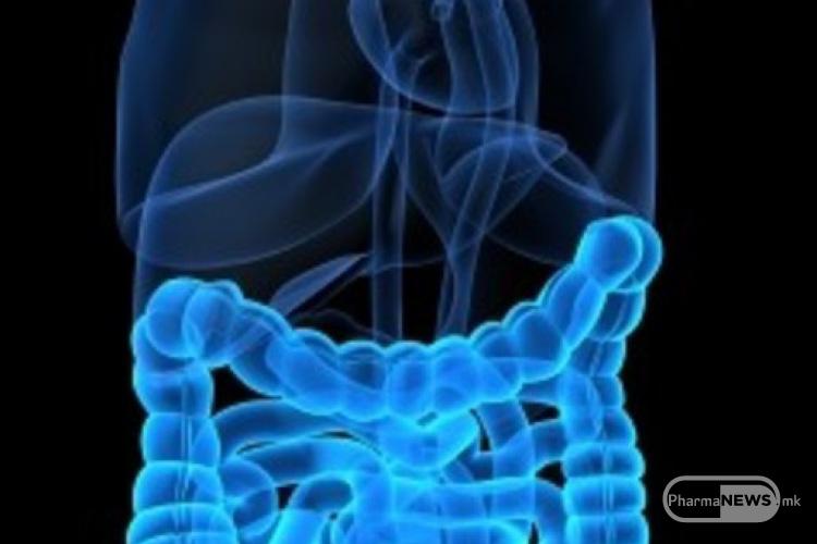 zastita-crevna-mikroflora-od-antibioticite