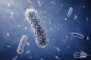 balansot-na-dobrite-i-losite-mikroorganizmi-najvazni-za-zdravjeto_2