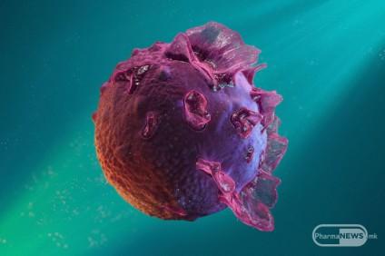 herpes-protiv-rak