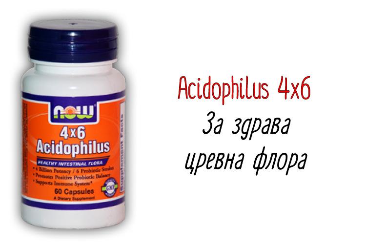 Acidophilus-4x6