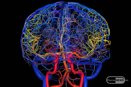 otkrieni-se-novi-meningalni-limfni-sadovi