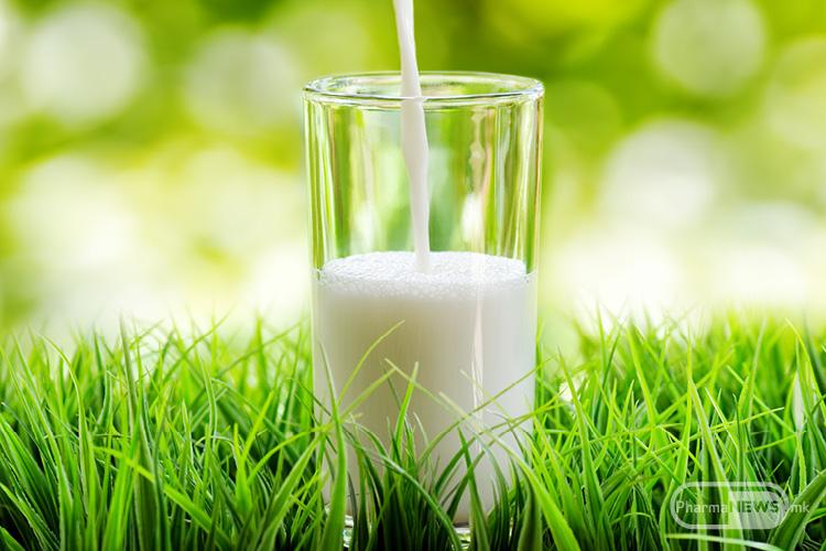 pienjeto-na-jogurt-sekoj-den-ve-zastituva-od-dijabetes
