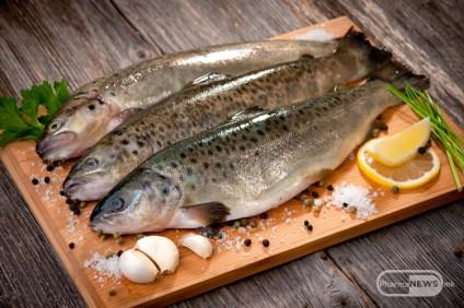 pridobivki-od-jadenje-riba