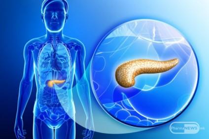 vestacki-pankreas-uspesen-kaj-dijabetes-melitus-tip-1_image