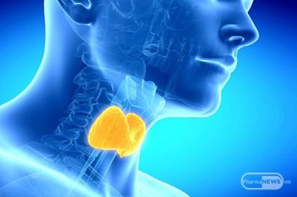 25-maj-svetski-den-na-tiroidna-zhlezda_image