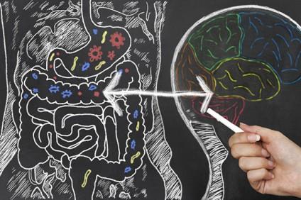 alchajmerova-bolest-rezultat-na-narushena-crevna-mikrobiota_image