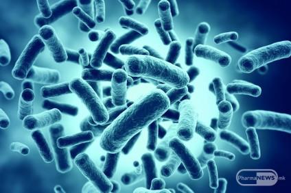 gastrointestinalniot-mikrobiom-lichna-karta-na-sekoja-individua_image