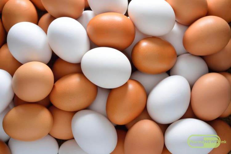 genetski-modificirani-kokoshki-vo-borba-protiv-rakot_image
