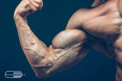 muskulite-go-pametat-svojot-rast_image