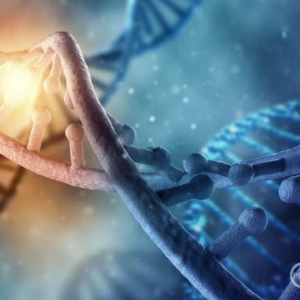 ureduvanje-na-chovechkite-geni-direktno-vo-zhivoto-tkivo_image