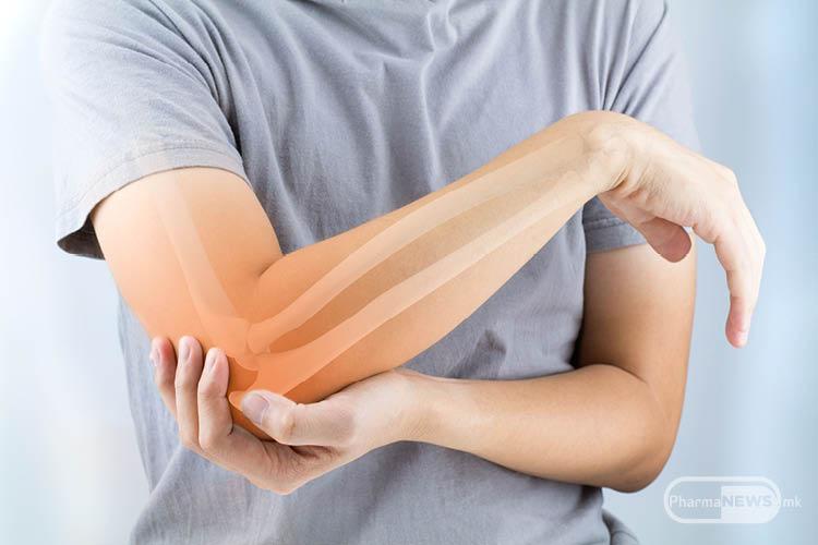 koi-chekori-mozhe-da-se-prezmat-vo-nasoka-na-prevencija-na-osteoporoza_image