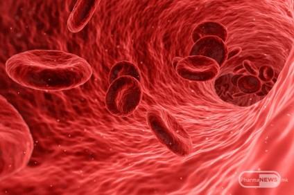 hemostaza-fibrinoliza-i-kakva-vrska-imaat-tie-so-d-dimer-ispituvanjeto_image